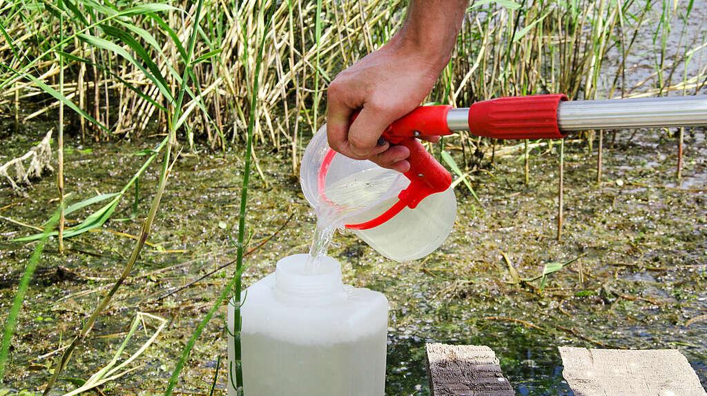 Wasserprobe für Labor wird aus einem Becher in eine größere Flasche geschüttet
