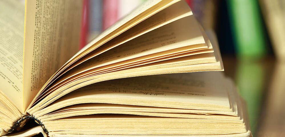 Aufgeschlagenes Buch vor einer Reihe von farbigen Büchern