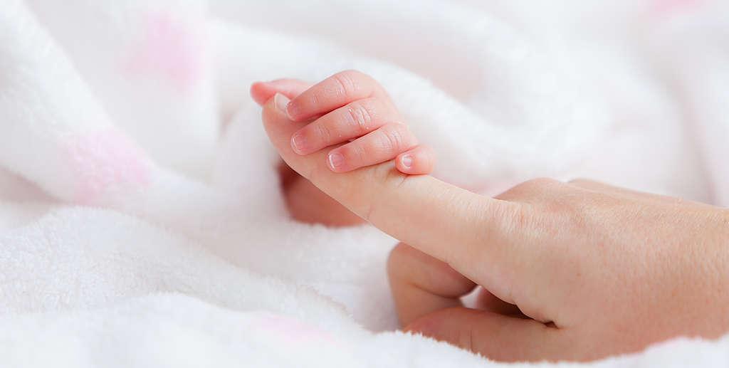 Die Finder eines Babys umfassen einen Finger eines Erwachsenen